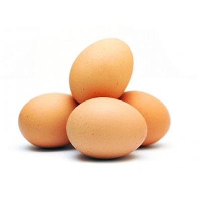 gratis online eskorte egg