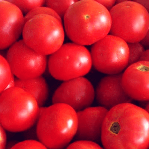 nan-and-pops-Tomatoes-400